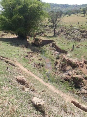 Terreno São Luis Montes Belos - Foto 8