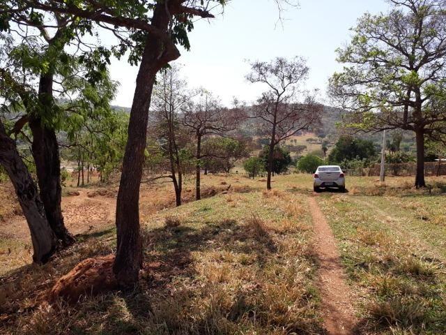 Terreno São Luis Montes Belos - Foto 11