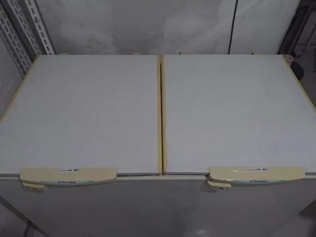 Freezer Horizontal Electrolux H400