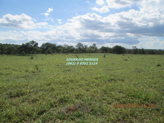 Terra c/ um alqueire sem benfeitorias, 600 metros da BR 060 Abadiânia, expansão Urbana - Foto 18