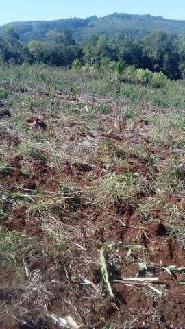 Bela chácara para plantação toda mecanizada, 5 km do asfalto