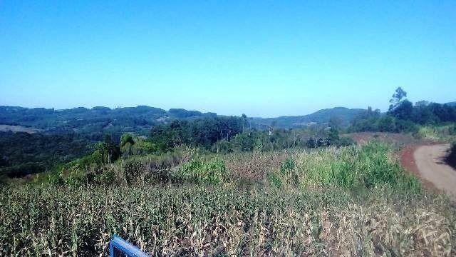 Bela chácara para plantação toda mecanizada, 5 km do asfalto - Foto 5