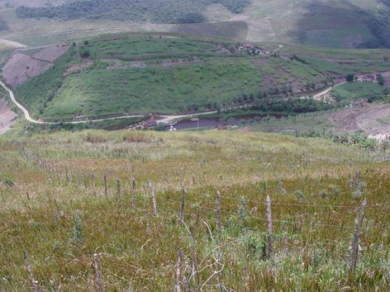Fazenda com 80 hectares em Amaraji/Pe - REF. 286 - Foto 3