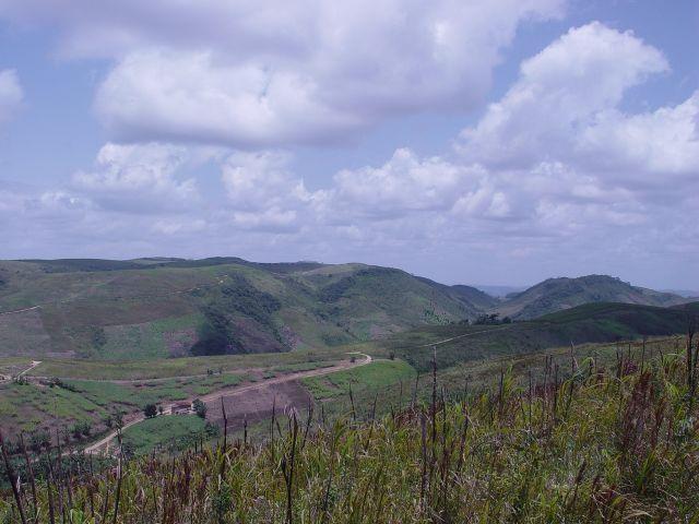 Fazenda com 80 hectares em Amaraji/Pe - REF. 286 - Foto 9