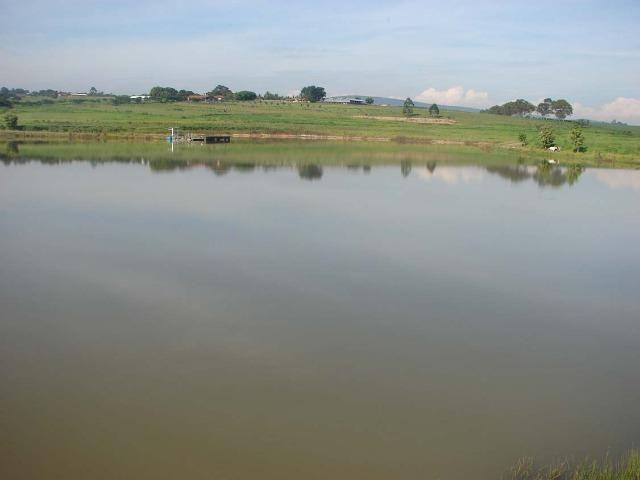 Fazenda 90 Hectares Prox. Sorocaba - Foto 2