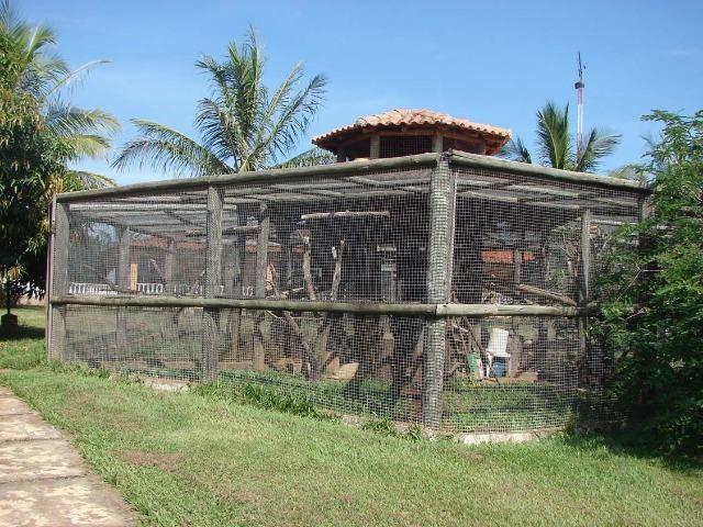 Fazenda 90 Hectares Prox. Sorocaba - Foto 12