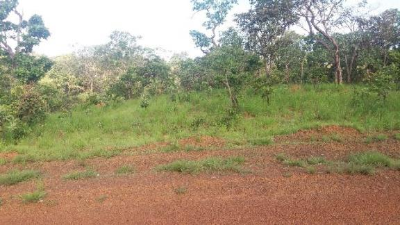 Lote 1000m²
