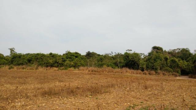 Fazenda Fechada Nova Ubiratã - 1568ha - Foto 5