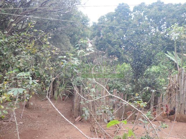 Bemposta, casa com amplo terreno - Foto 12