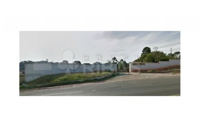 Terreno Residencial à venda, Jardim Marambaia, Almirante Tamandaré - TE0039.