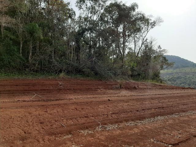 Fazenda de 94 alqueires .Alagado Rio da Areia - Faxinal do Céu . Pinhão PR - Foto 5