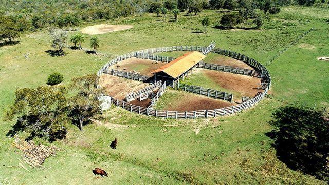 Fazenda com ótima localização, aceita permuta em área menor - Foto 2