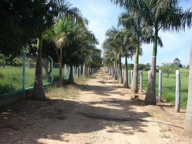 Fazenda 90 Hectares Prox. Sorocaba - Foto 20