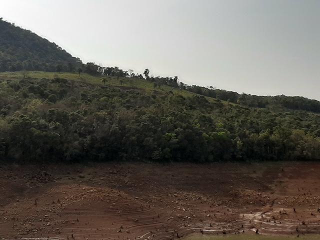 Fazenda de 94 alqueires .Alagado Rio da Areia - Faxinal do Céu . Pinhão PR - Foto 9