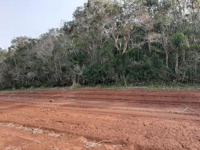 Fazenda de 94 alqueires .Alagado Rio da Areia - Faxinal do Céu . Pinhão PR - Foto 4
