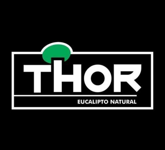 Lenhas Thor - Foto 5