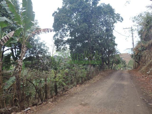 Bemposta, casa com amplo terreno - Foto 17