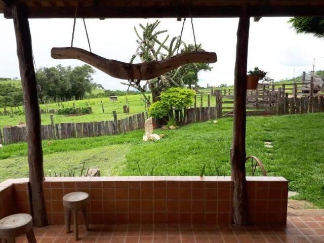 148 Alq. Cultura D Bacuri 50% Entrada + 2 Anuais Água Própria Da Faz. Água Limpa GO - Foto 6