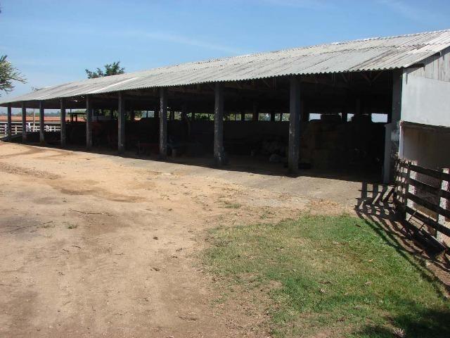 Fazenda 90 Hectares Prox. Sorocaba - Foto 14