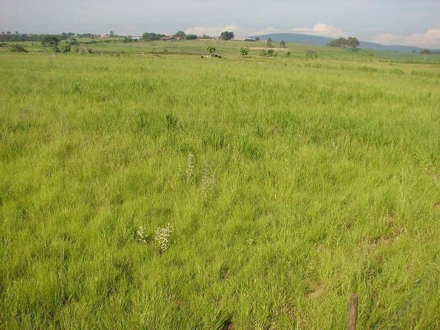 Fazenda 90 Hectares Prox. Sorocaba - Foto 15