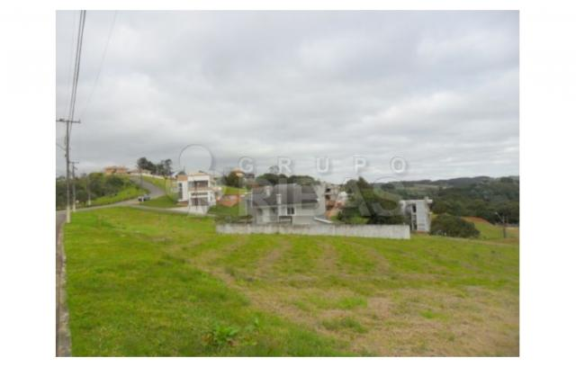 Terreno residencial à venda, vila torres i, campo largo - te0117. - Foto 9