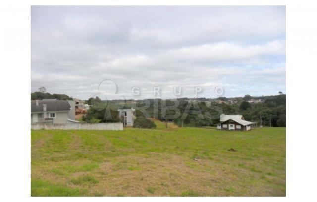 Terreno residencial à venda, vila torres i, campo largo - te0117. - Foto 11