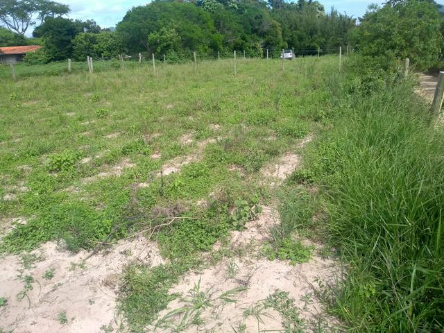 Vendo terreno muito bem localizado