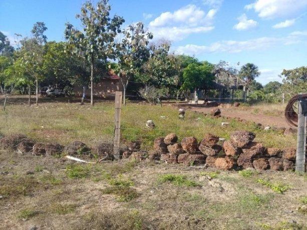 Fazenda 50alq Santa Maria PA 10mil o alq Tr x Casa em Palmas URG Airton - Foto 6