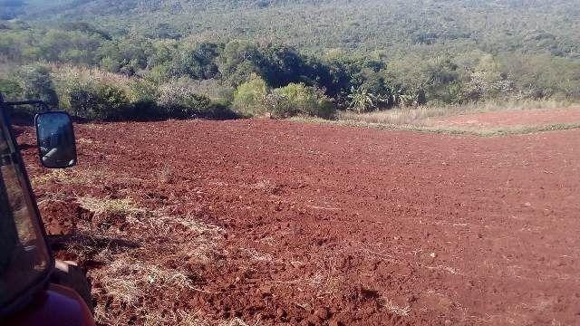 Bela chácara para plantação toda mecanizada, 5 km do asfalto - Foto 9