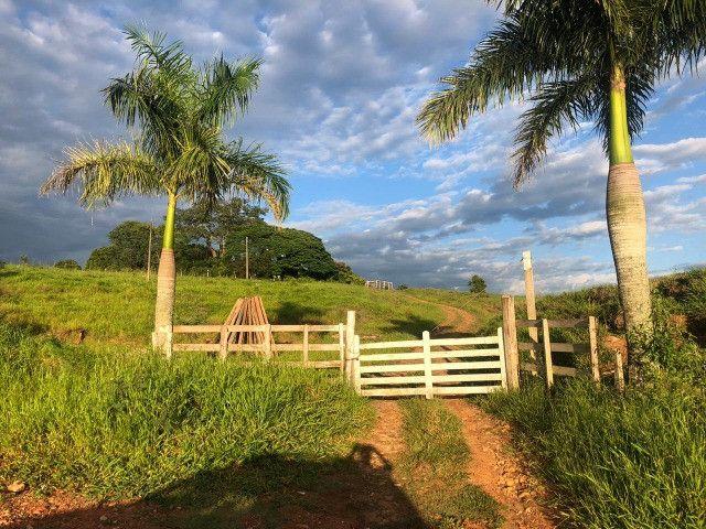 Sitio a Venda - Tatuí - SP - Foto 5