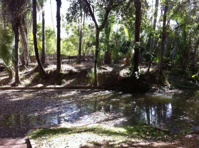Sítio localizado em Nazária, Loteamento Tambaqui - Foto 3