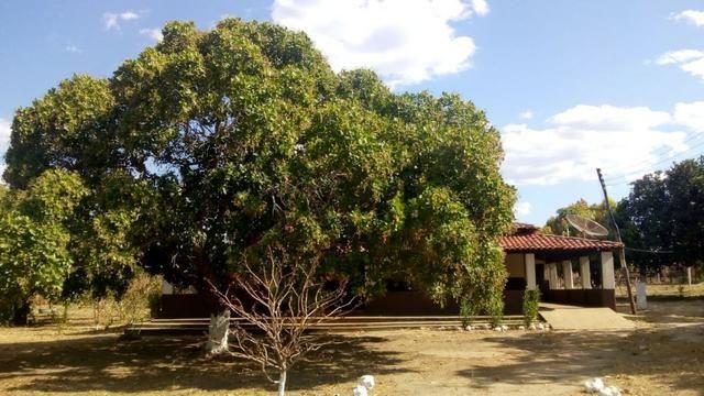 Propriedade Rural/São Gonçalo do Piauí-PI