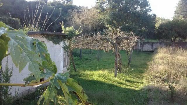 Chácara com 15.400 m² Campo Largo da Roseira - Foto 11