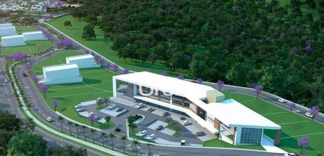Terreno à venda, 722 m² por R$ 398.000,00 - Residencial Marília - Senador Canedo/GO