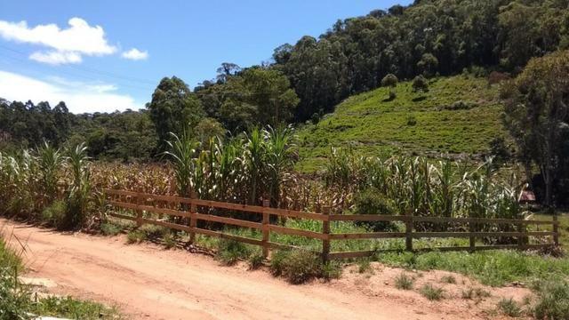 Vendo - Chácara em Alto Peçanha - Região da Pedra Azul - Domingos Martins - Foto 4