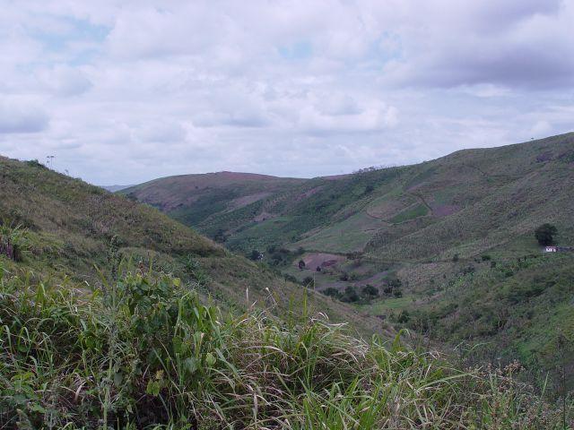 Fazenda com 80 hectares em Amaraji/Pe - REF. 286 - Foto 20