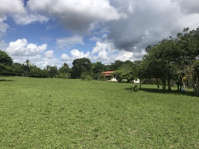 Granja, sítio, área, fazenda em Igarassu, Porto do vasco na estrada de mangue seco! - Foto 20