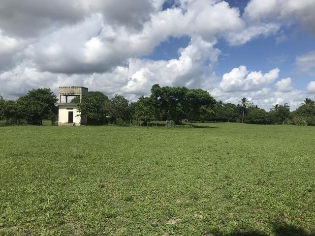 Granja, sítio, área, fazenda em Igarassu, Porto do vasco na estrada de mangue seco! - Foto 5