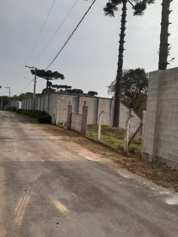 Chácara em perímetro urbano São José dos pinhais - Foto 2