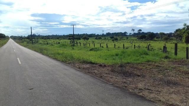 Vendo Fazenda em São João da baliza - Foto 5
