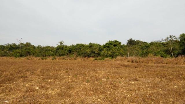Fazenda Fechada Nova Ubiratã - 1568ha - Foto 3