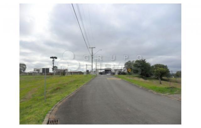 Terreno residencial à venda, vila torres i, campo largo - te0117. - Foto 5