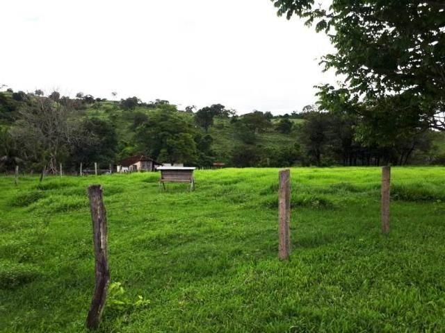 148 Alq. Cultura D Bacuri 50% Entrada + 2 Anuais Água Própria Da Faz. Água Limpa GO - Foto 13