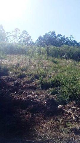 Bela chácara para plantação toda mecanizada, 5 km do asfalto - Foto 2