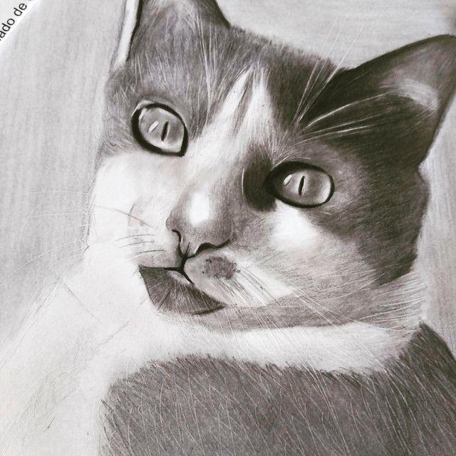Desenho realista - Foto 3