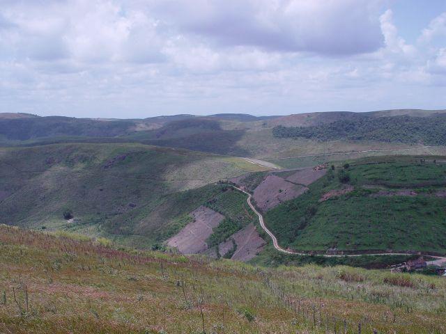 Fazenda com 80 hectares em Amaraji/Pe - REF. 286 - Foto 4