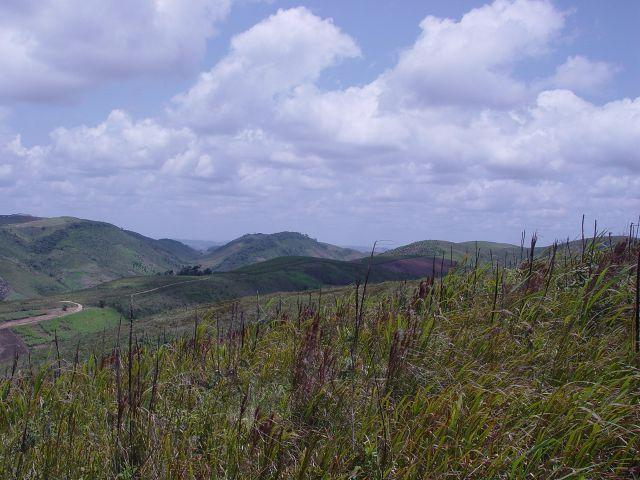 Fazenda com 80 hectares em Amaraji/Pe - REF. 286 - Foto 10