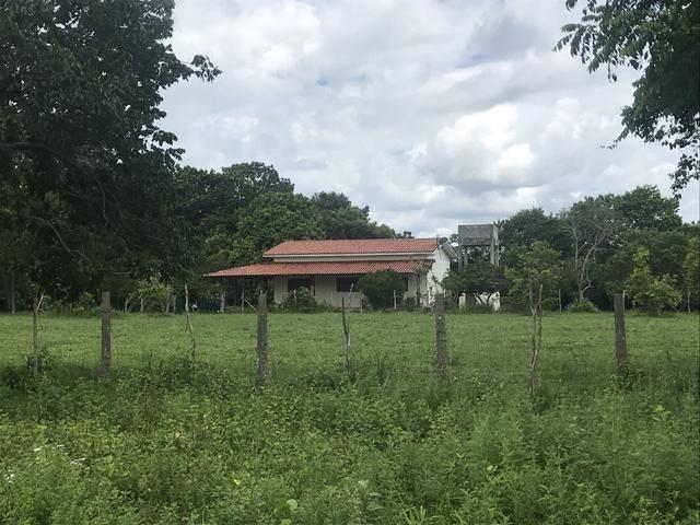 Granja, sítio, área, fazenda em Igarassu, Porto do vasco na estrada de mangue seco! - Foto 4