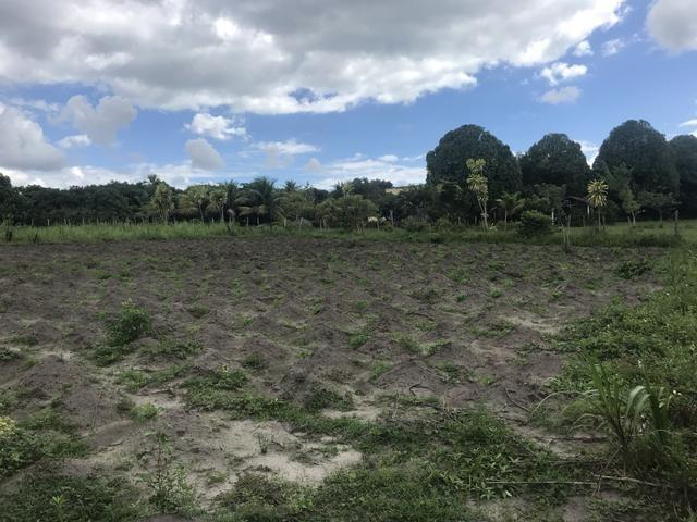 Granja, sítio, área, fazenda em Igarassu, Porto do vasco na estrada de mangue seco! - Foto 3