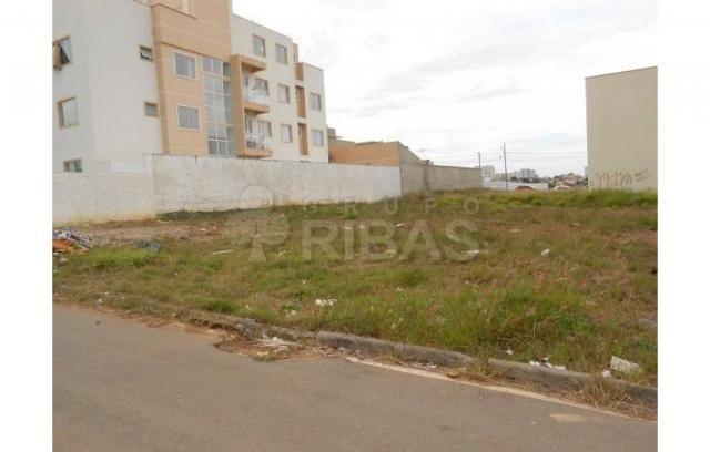 Terreno residencial à venda, cidade industrial, curitiba - te0196. - Foto 4